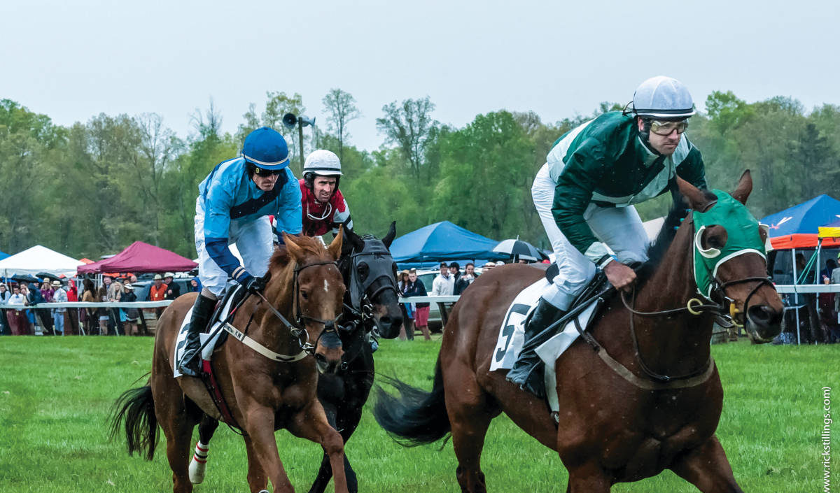 Close-up of horses racing at Foxfield