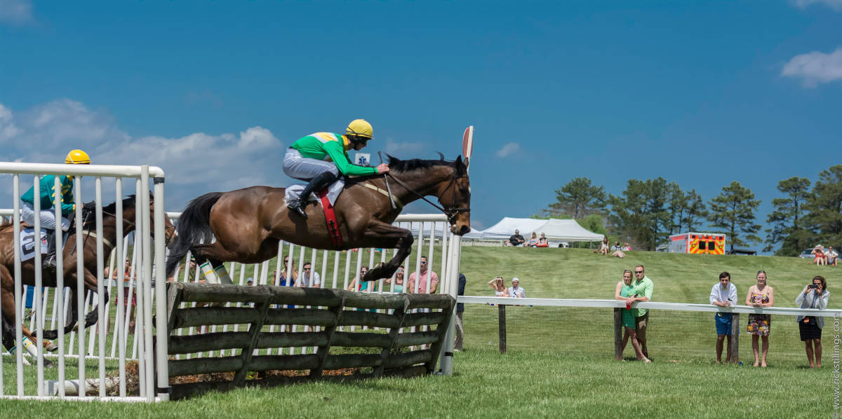 Horse jumping during a race at Foxfield