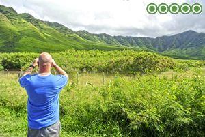 best-reviewed-tours-hawaii