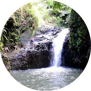 Private Tours Oahu Hawaii Water Fall Hiking Tour
