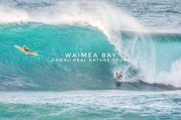 Big Wave Season On Oahu