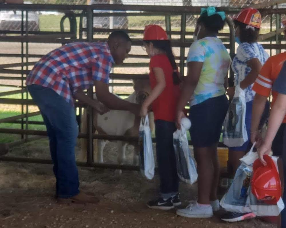 WHS FFA volunteers at the BC Fair giving animal tours to elementary students