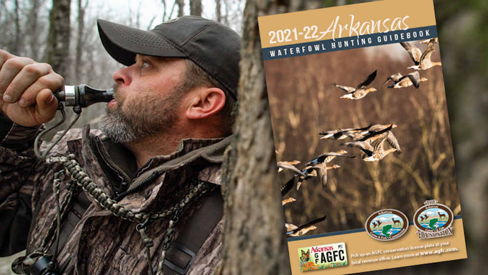 Waterfowl guidebook available online