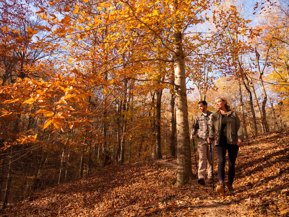 Explore autumn colors and adventures in The Natural State