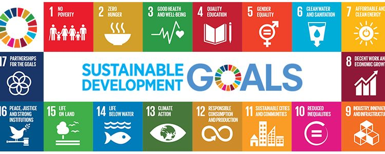 The Sustainable Development Goals and Election Management