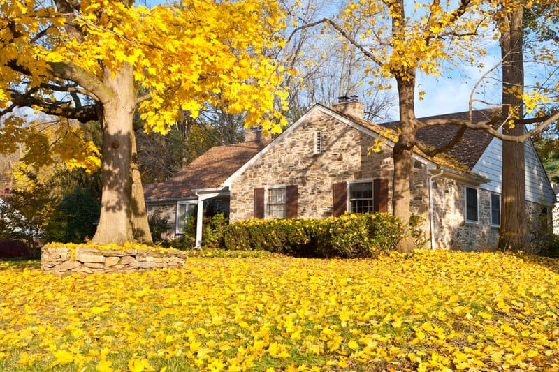 Fall Roof Maintenance: 5 Things You Should Do Right Now