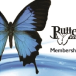 Butterfly Gift Cards