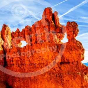 Point North Photography-BRYCE CANYON HOODOOS