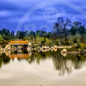 Point North Photography-JAPANESE GARDEN BRIDGE