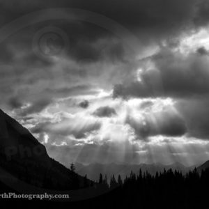 Point North Photography-Jeff Wier-SHINNING DOWN