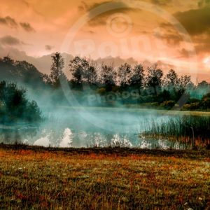 Point North Photography-MISTY MORNING