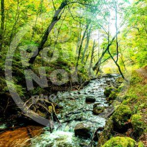 Point North Photography-STREAM ARCH BRIDGE MICHIGAN'S UP