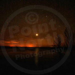 Point North Photography-VENUS 2