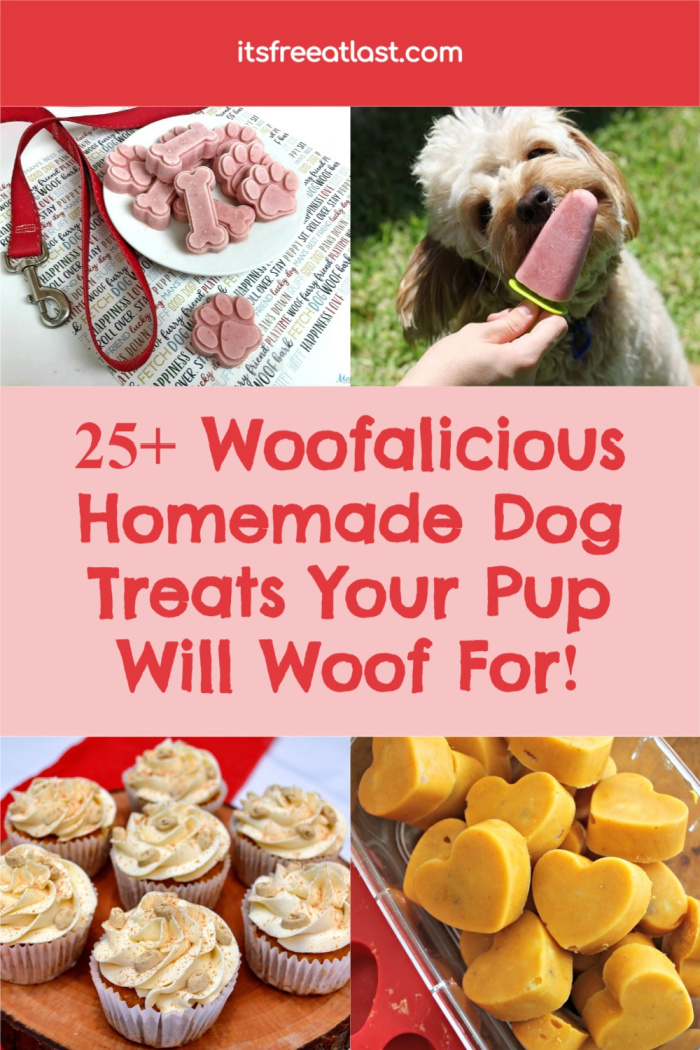 25+ Woofalicious Homemade Dog Treats Your Pup Will Woof For!