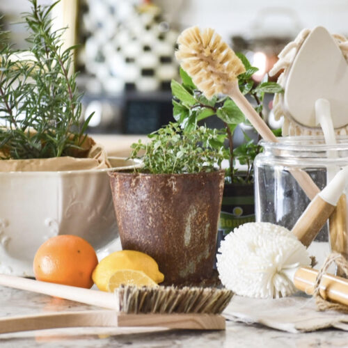 5 QUICK SPRING CLEANING TIPS