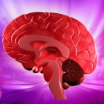 Brain Health (Illustration courtesy of Dream Designs via freedigitalphotos.net)