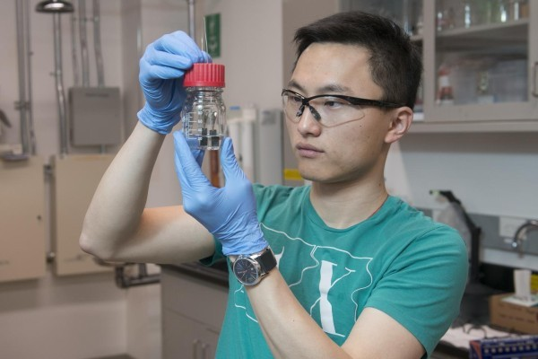 Clean Hydrogen: Stanford graduate student Haotian Wang and colleagues have developed a novel water splitter that produces clean-burning hydrogen from water 24 hours a day, seven days a week. (Photo Courtesy of L.A. Cicero/Stanford News Service)