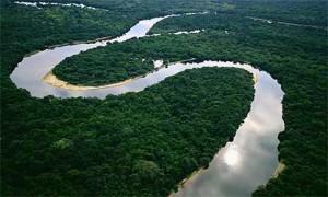 The Amazon Rainforest (Photo courtesy of Ron Gold via Flikr)