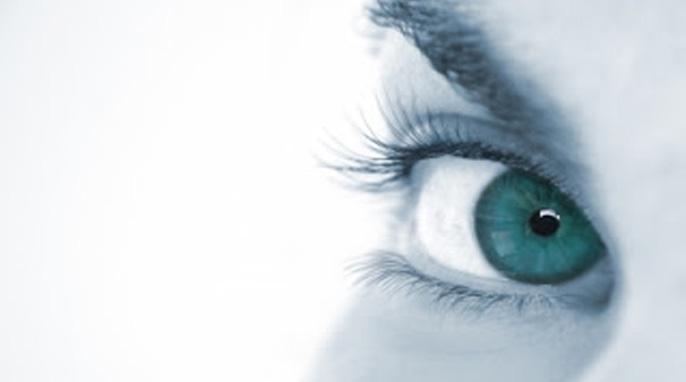 human eye, blind spot