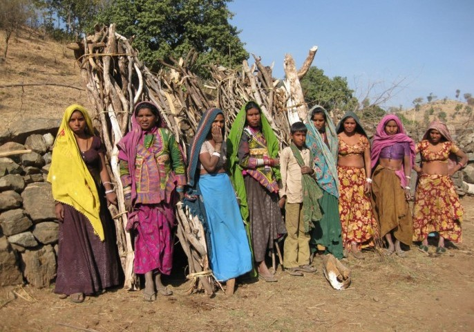 Women in the rural area of Rajasthan, India, collect firewood from a nearby forest and wildlife preserve for daily cooking activities. Courtesy of H.S. Udaykumar and University of Iowa