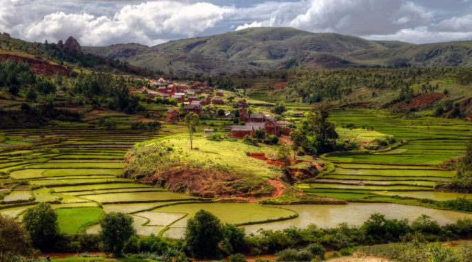 Ancient Crops Reveal Asian Colonization of Madagascar