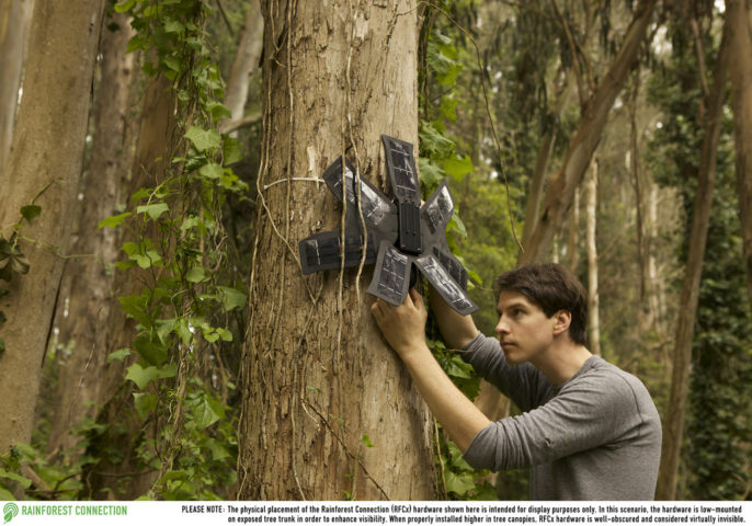Curbing the Chainsaws: Recycled Smartphones Hunt Down Illegal Loggers