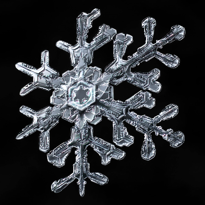 photographing snowflakes