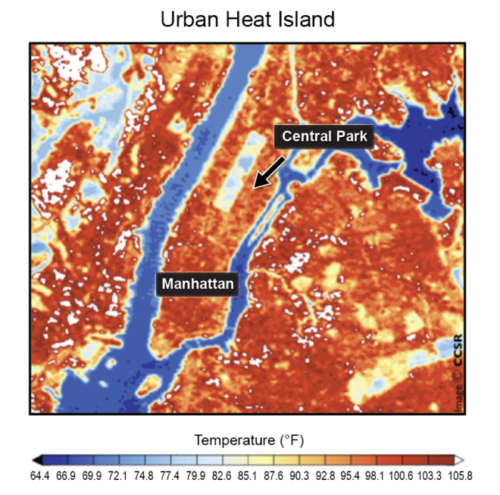 Surface temperatures in New York City on a summer day. Central Park is 10°F cooler than the rest of the city. Center for Climate Systems Research, Columbia University.