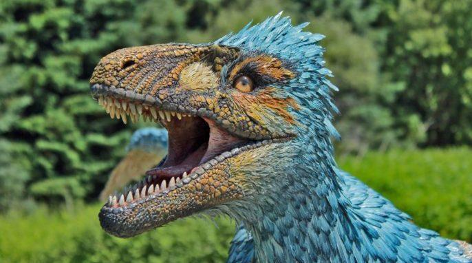Dinosaur Dromaeosaurus by David Alden