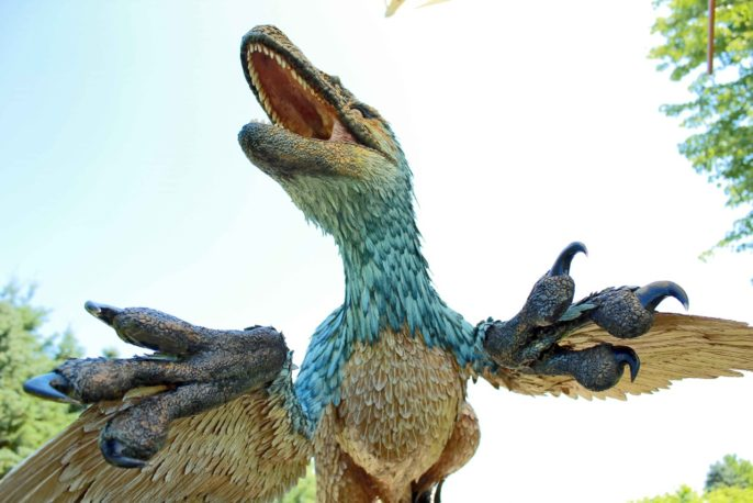 Dromaeosaurus outdoors 7