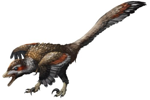 Illustration of Velociraptor, in all its snarling glory, created specially for the campaign. © Emily Willoughby