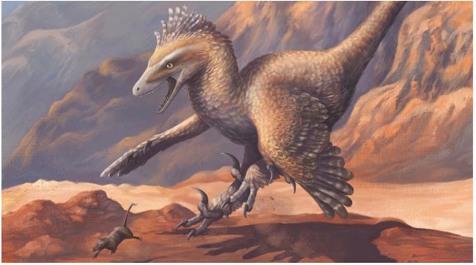 Velociraptor © Emily Willoughby