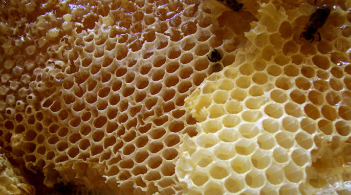 Nanostructured Honeycomb Creates Electricity from Light