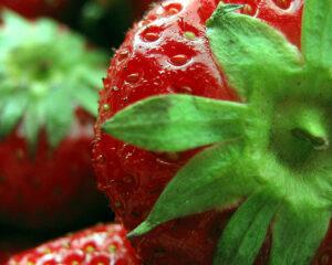 organic strawberries