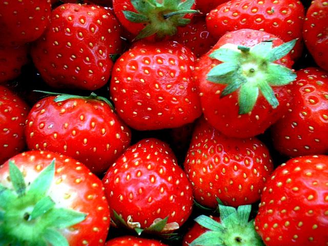 Strawberries, organic
