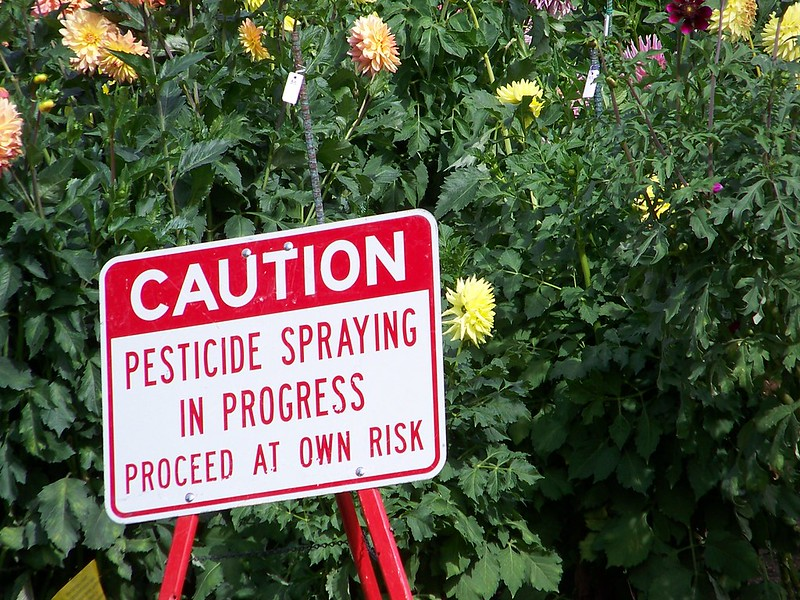 A sign warns visitors of pesticide spraying at Manito Park in Spokane, WA. (Photo by jetsandzeplins)