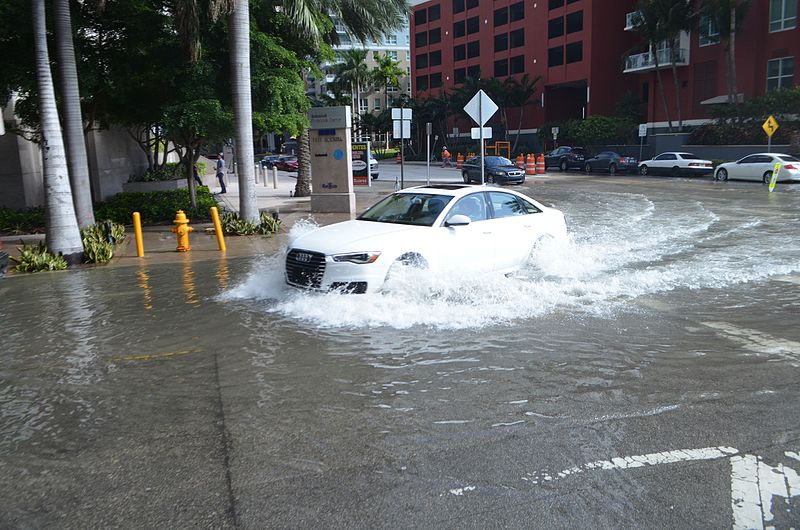 Sunny day high tide nuisance flooding in downtown Miami, Florida. Source: Wikimedia.