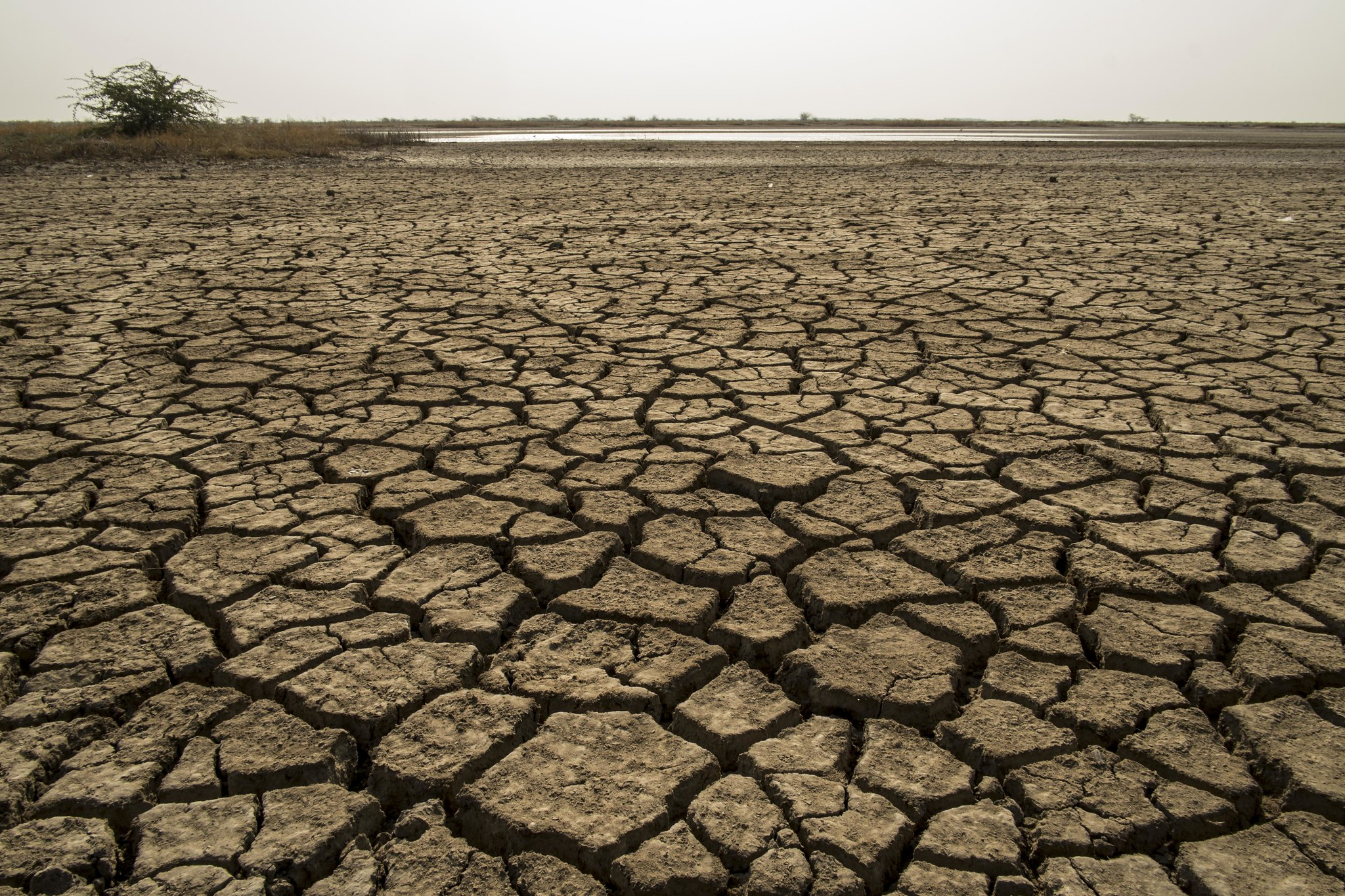 Climate Change: global aridity