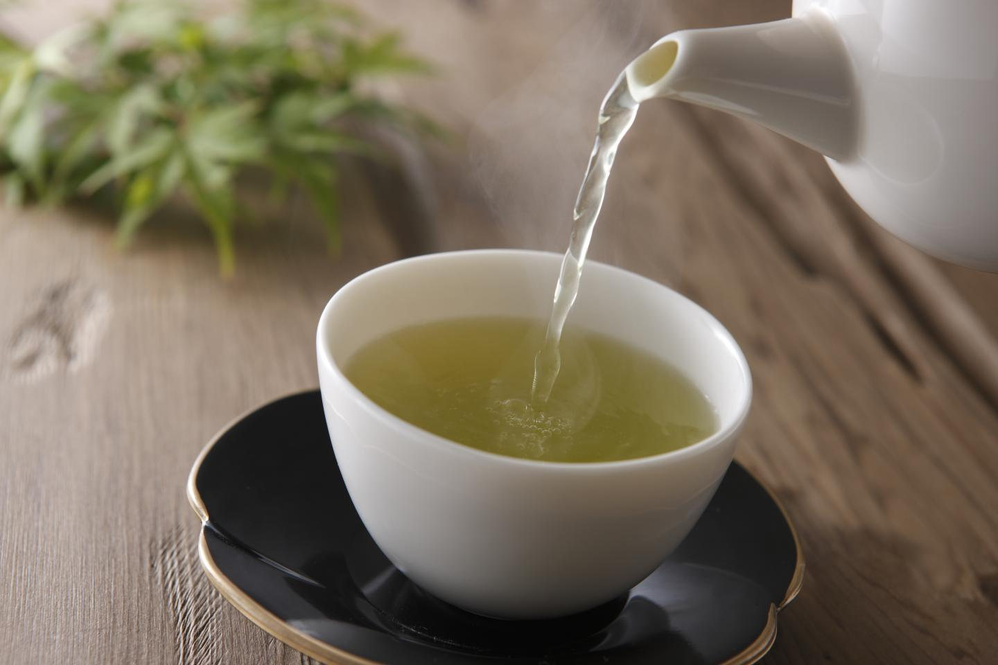 "A compound found in green tea stabilizes an anti-cancer protein known as the ""guardian of the genome."" Photo courtesy of the Rensselaer Polytechnic Institute"
