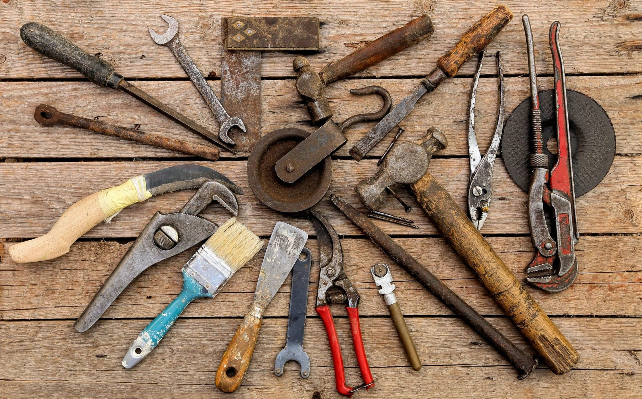 how our brains learn to use tools