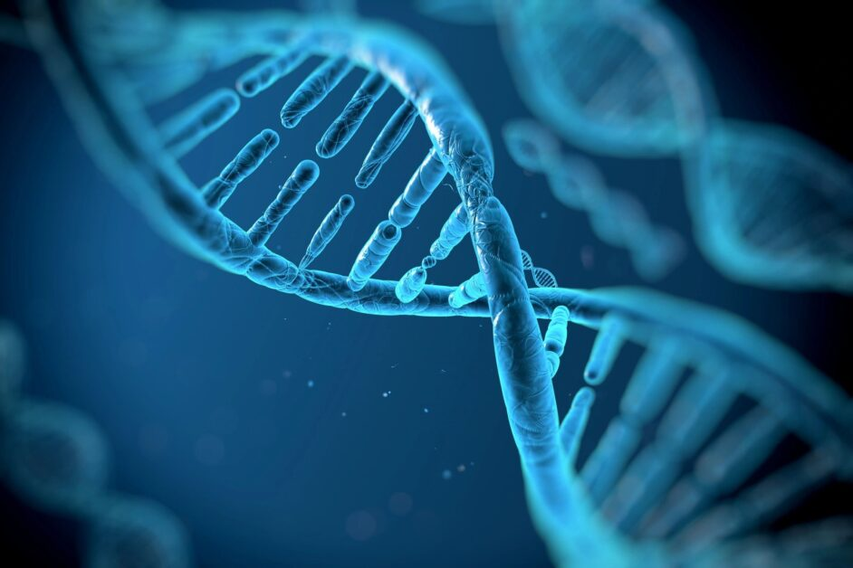 Epigenetics of offspring influenced by parents' diets