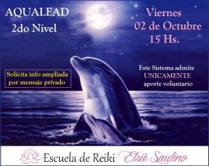 593522__moonlight-dolphins_p