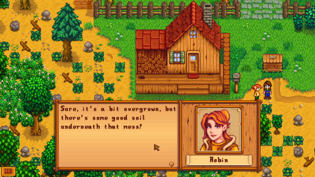 House of Stardew Valley video game character Leah