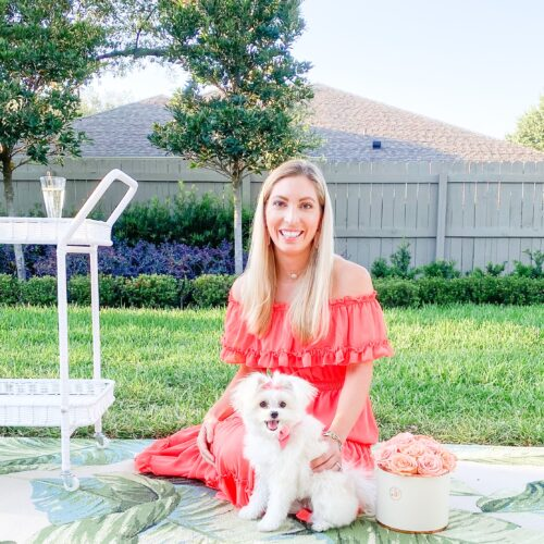 6 LIFE LESSONS YOU LEARN BECOMING A DOG MOM