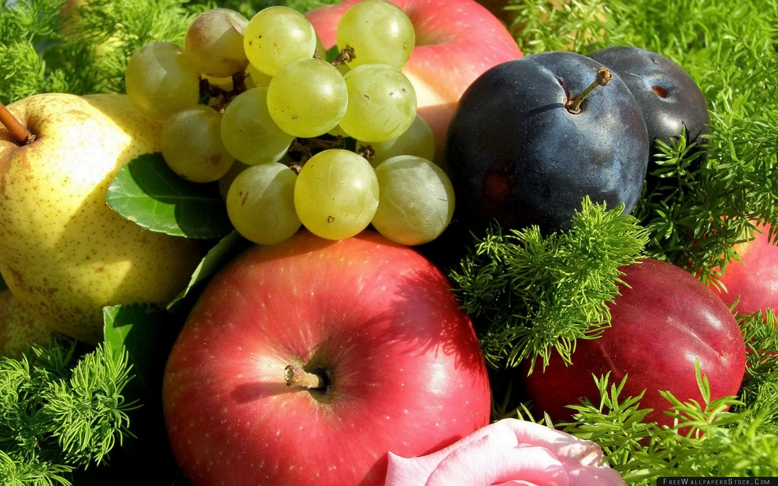 Download Free Wallpaper Apples Grapes Plums Fruit Grass