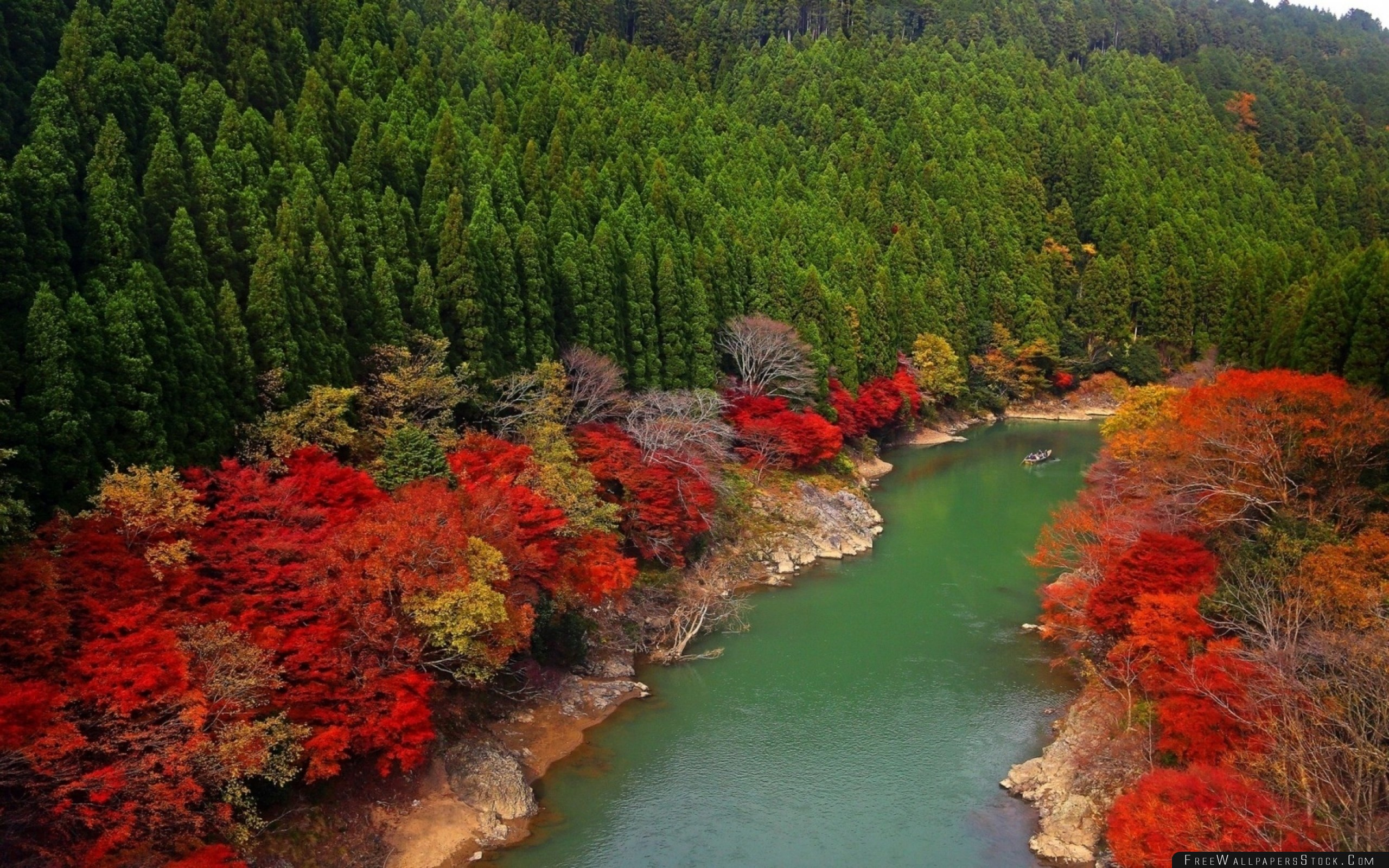 Download Free Wallpaper Autumn River Forest