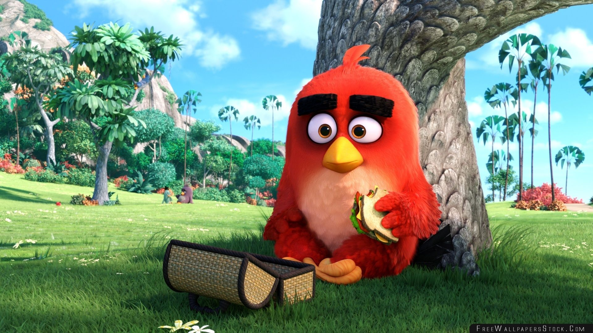 Download Free Wallpaper Red Angry Birds Movie