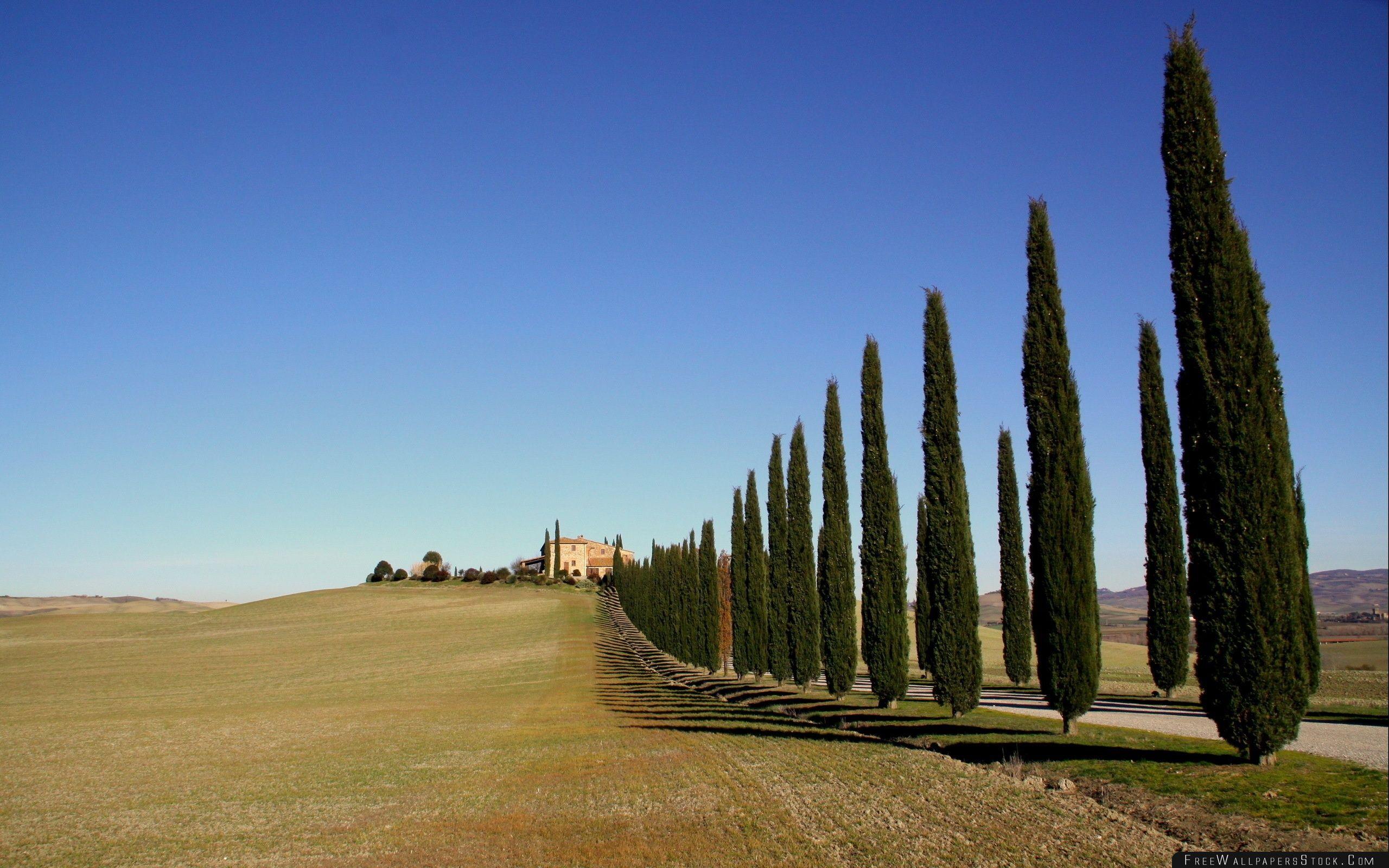 Download Free Wallpaper Tuscany Landscape