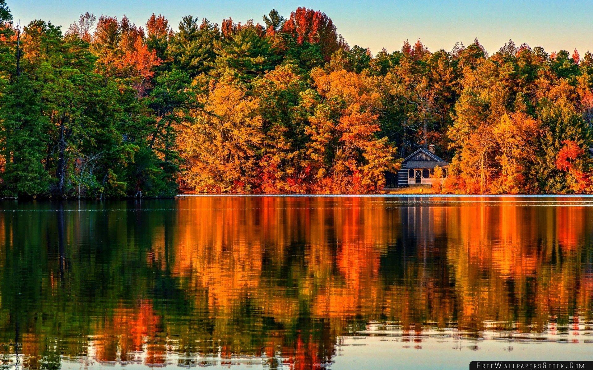 Download Free Wallpaper Villa   Autumn Forest