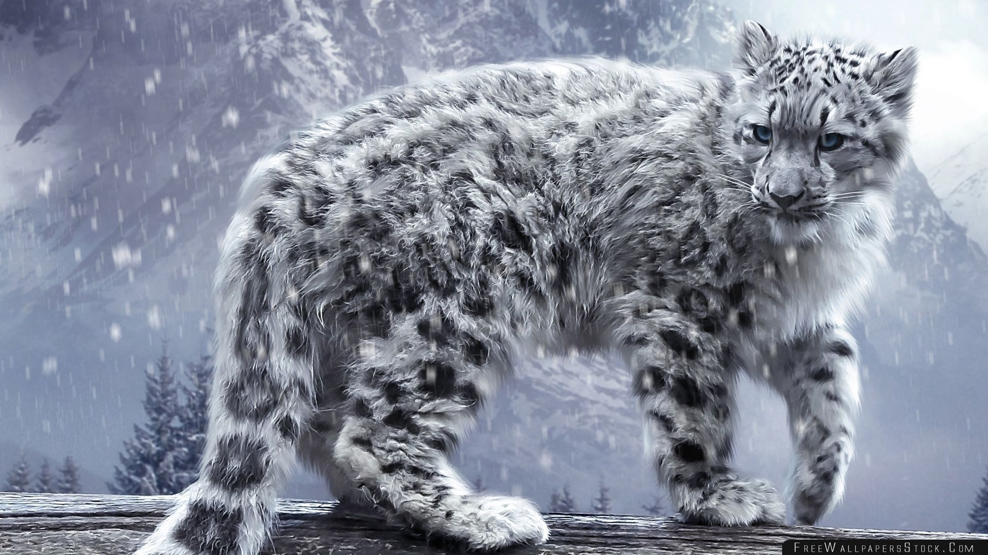Download Free Wallpaper White Leopard